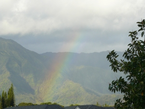 Rainbow seen during my Hawaiian vacation in 2011 - I love Kauai!